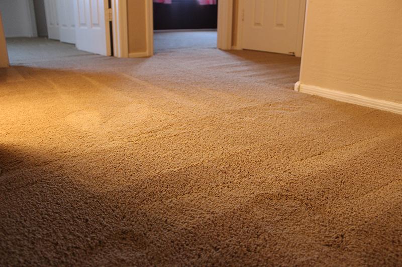 Carpet Repair Denver Don T Replace It Repair It